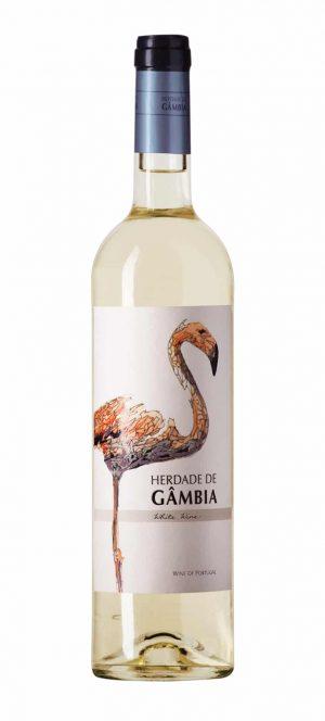 gambia_branco