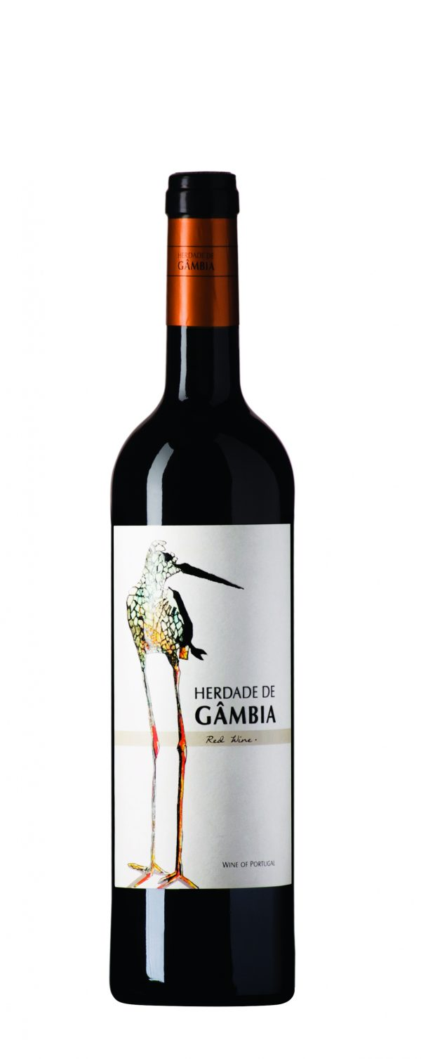 gambia_tinto